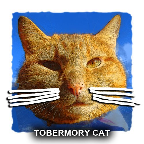 tobermory cat book